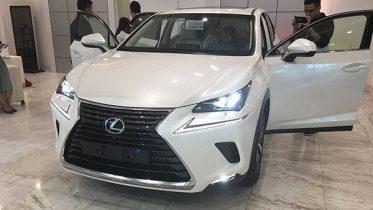 gia-xe-lexus-nx300-2020-muaxegiatot-vn-1-e1556322651572